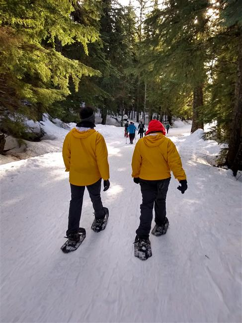 Snowshoeing to Gold Creek