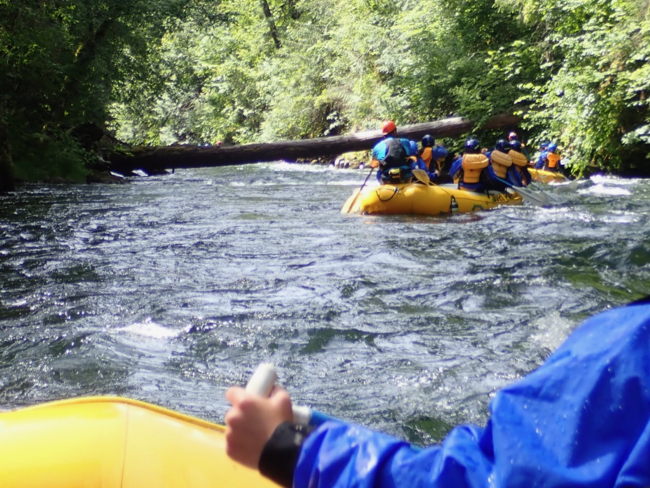 Between the rapids are stretches of calmer water. The scenery was very good on the White Salmon River.