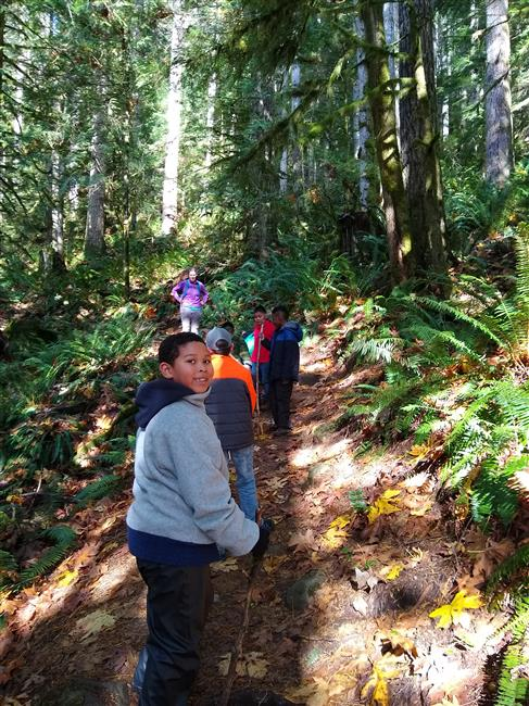 Madrona students heading up the trail towards Heybrook Lookout Tower.