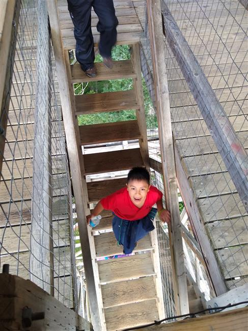 Students carefully make their way back down the stairs of Heybrook Lookout Tower.